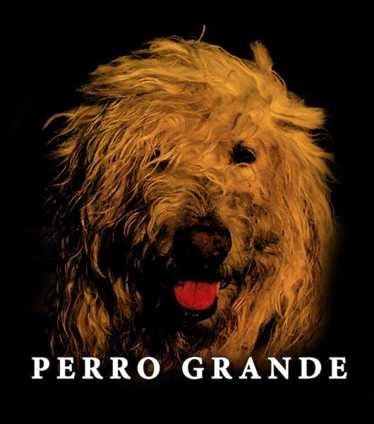Perro Grande Album by Joaquin Berrios